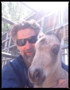 Equine vet tech jobs near me